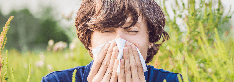 Co pyli w maju? Czyli które rośliny są największym utrapieniem dla alergików